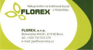FLOREX logo